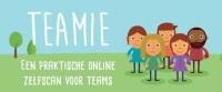 Teamie-Effectory